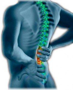 back-pain1-244x300.jpg